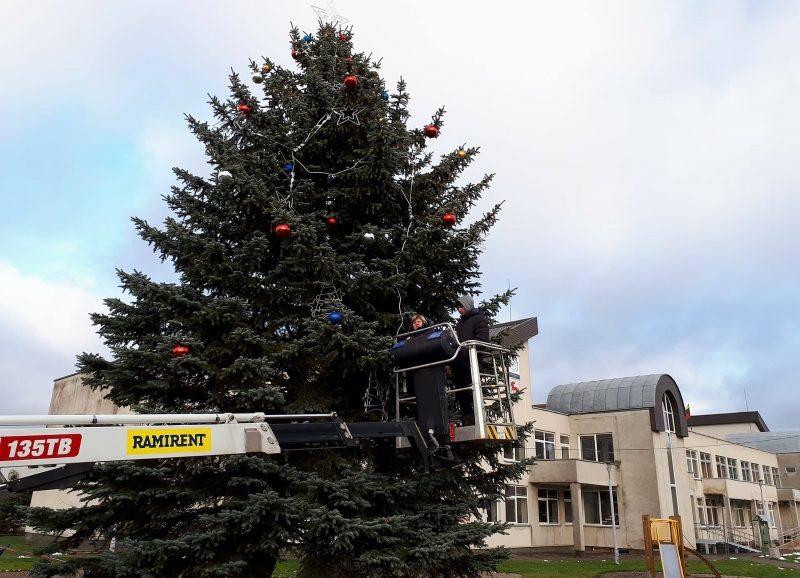 Kalėdinės eglutės sužibs visose Alytaus rajono seniūnijose