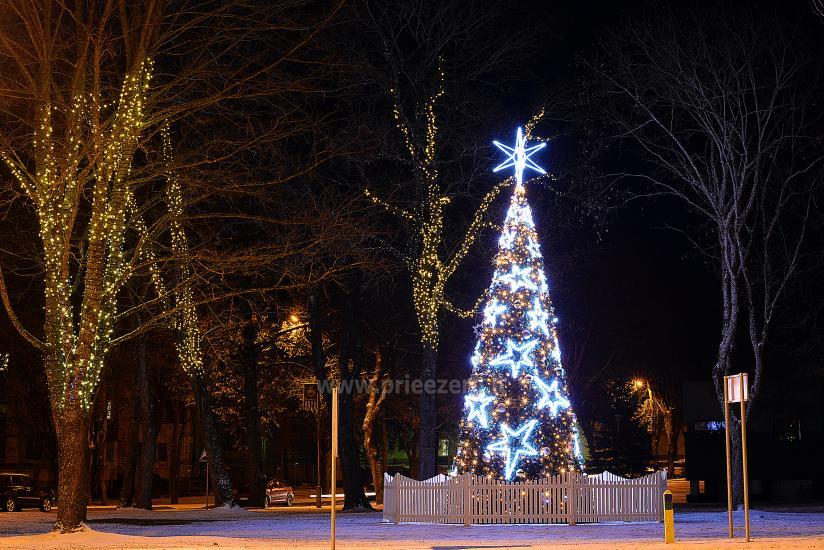 Ką verta aplankyti kalėdinėje Dzūkijoje? 5