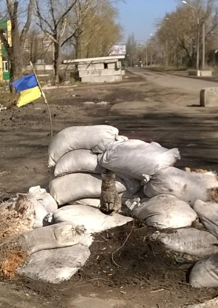 """Jėgas Dzūkijoje atgaunančių sužeistų Ukrainos karių palinkėjimas lietuviams: """"Taikaus jums dangaus"""" 7"""