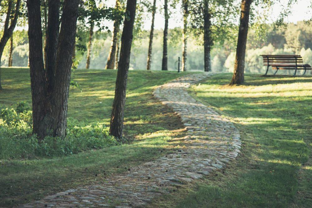 Kuo ypatingas kurortas, kuriame ilsėjosi ir medžiojo Lietuvos kunigaikščiai? 4