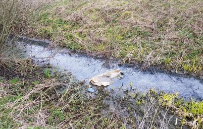 Aplinkosaugininkai Butrimonyse aptiko į upelį leidžiamas nuotekas