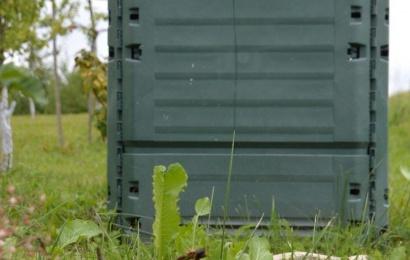 Kur dėti maisto atliekas, jei neturi jų konteinerio?