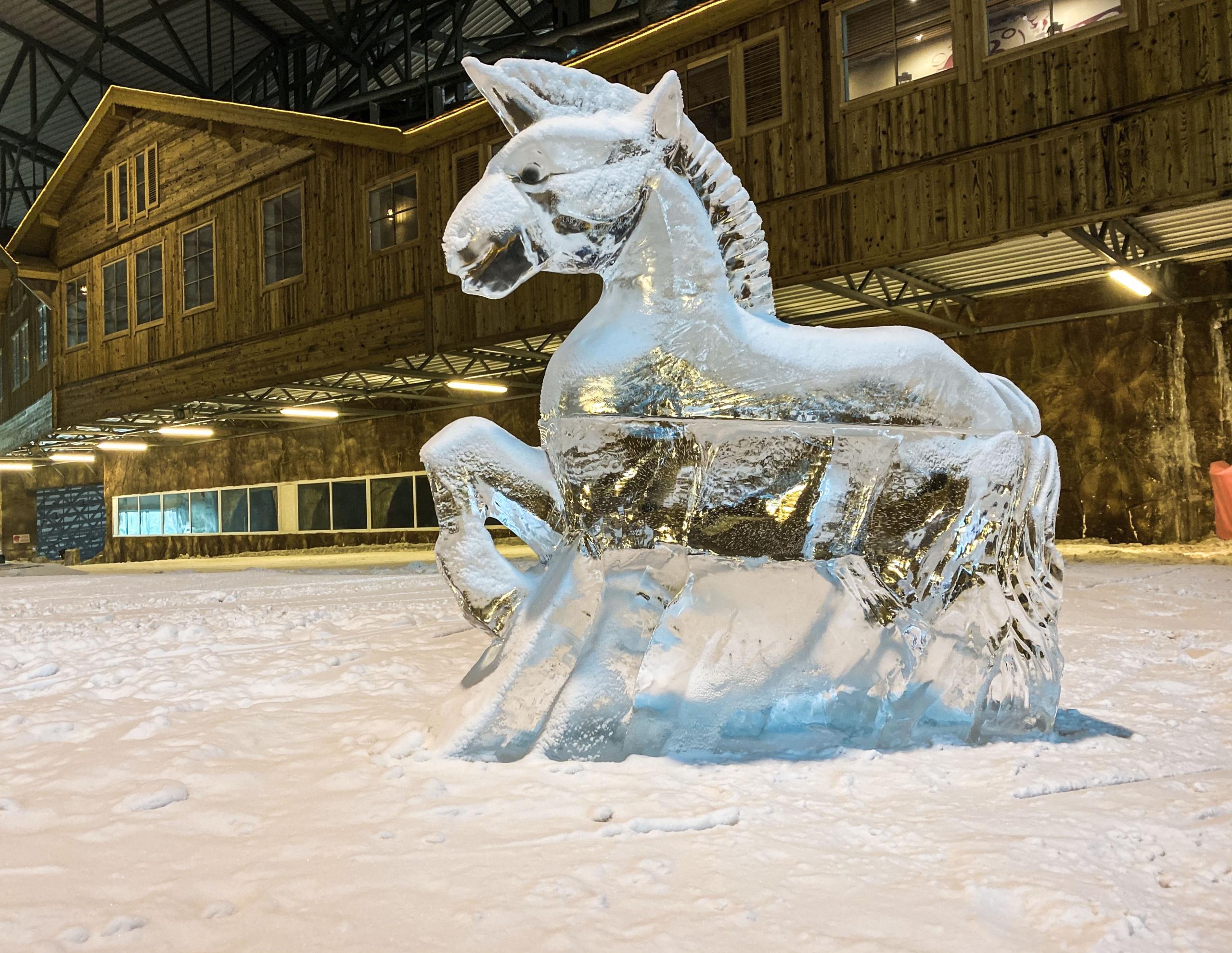 """Duris lankytojams atvėrė renovuota """"Snow arena"""": siūlo gausybę naujovių 4"""