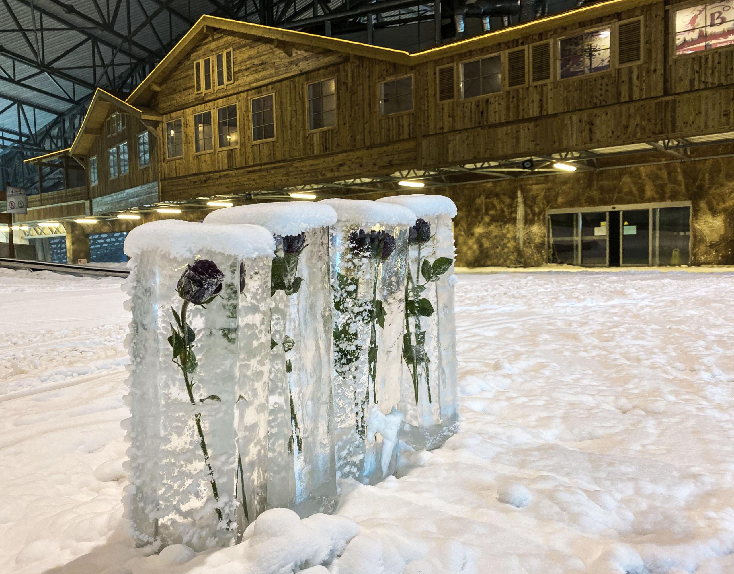 """Duris lankytojams atvėrė renovuota """"Snow arena"""": siūlo gausybę naujovių 6"""
