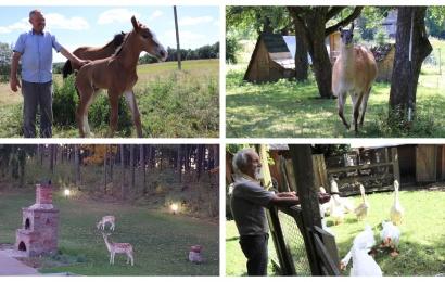 Alytaus rajono ūkiuose tarsi zoologijos sode: skelbimų nėra, bet apsilankyti galima