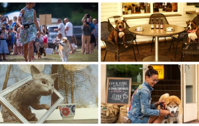 Druskininkai – draugiški gyvūnams: nuo išskirtinio valgiaraščio šunims iki tarptautinių parodų