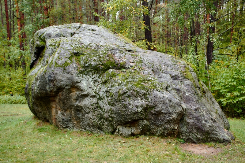 Velnio išmestas Didysis Dzūkijos akmuo – didžiausių šalies riedulių sąraše