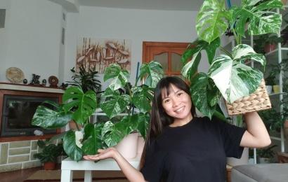 Alytuje apsigyvenusi filipinietė svajoja įkurti botanikos sodą