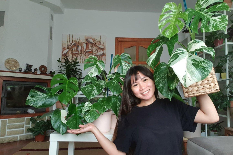 Alytuje apsigyvenusi filipinietė svajoja įkurti botanikos sodą 1