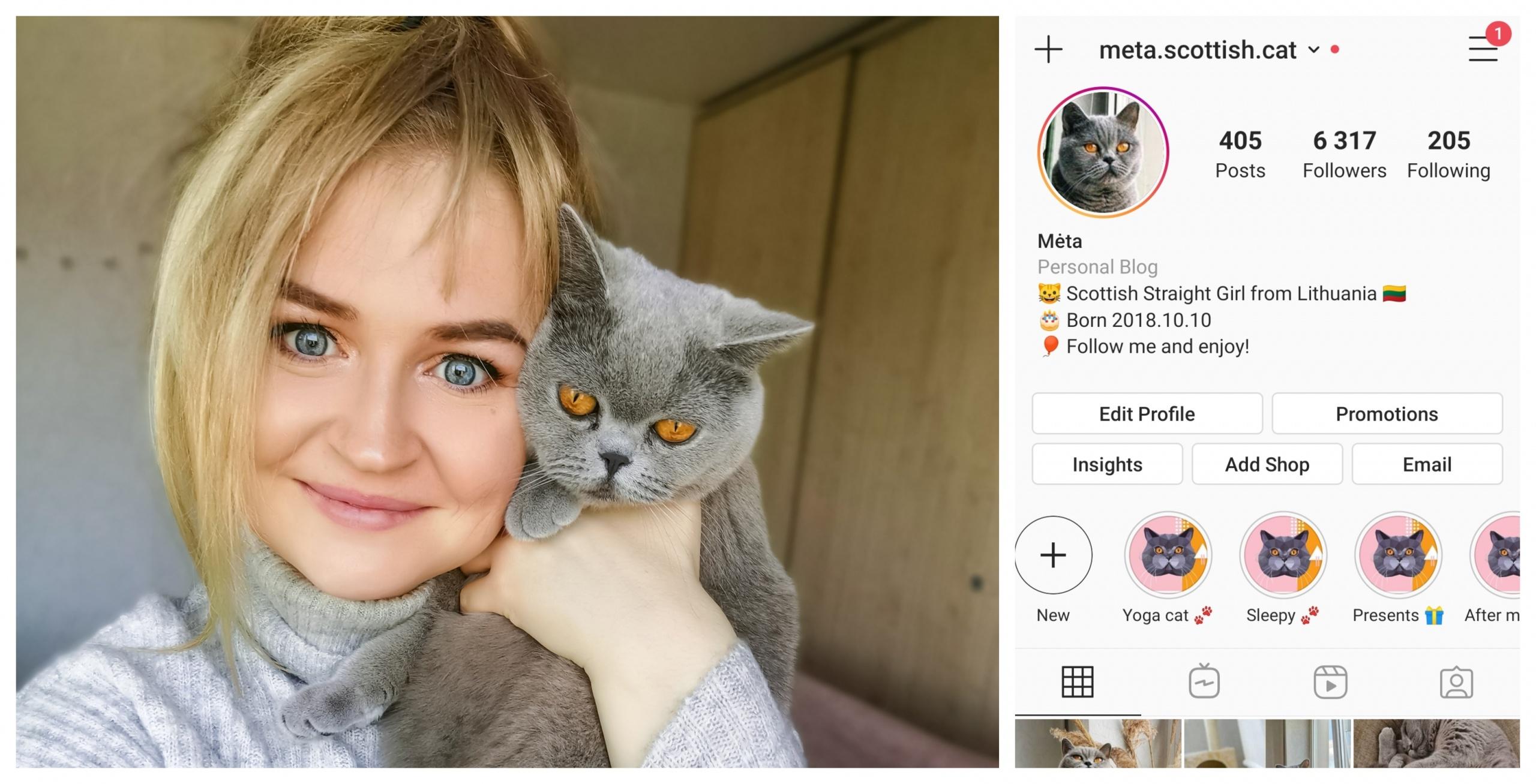 """""""Instagram"""" žvaigžde tapusi alytiškės katė skanėstams užsidirba pati 1"""