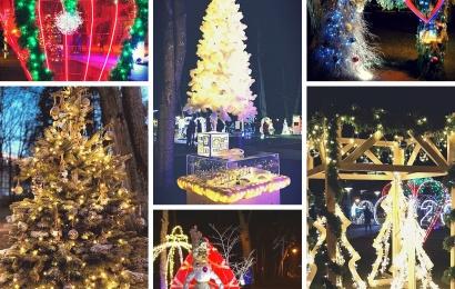Druskininkai kviečia kurti Kalėdų pasaką ir dalyvauti kalėdinių eglučių konkurse!